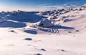 See Vasvranka - Velika Planina