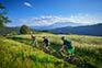 Mountainbiketour Jamnica
