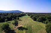 Wald, Golfplatz Lipica