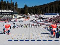 Biathlon Weltcup Pokljuka, Slowenien
