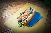 Hotdog-Kreation JEDU Wurst & Dog