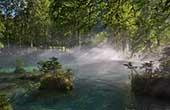 Wälder & smaragdgrüne Seen