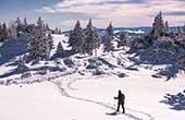 Schneewanderung Velika Planina