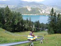 Bled - Sommerrodelbahn