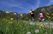 Bohinj - Fahrradweg Klodic