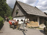 Bohinj - Oplen Haus in Studor