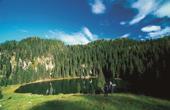 Bohinj - See Planina