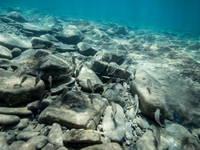 Izola - Tauchen Simonov zaliv