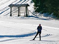 Kranjska Gora - Langlauf-Ski