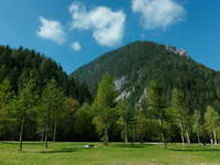 Kranjska Gora - Tal