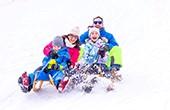 Kranjska Gora - Schlitten fahren Familie