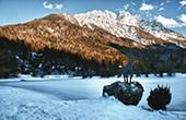 Kranjska Gora - See Jasna Winter