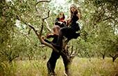 Piran - Oliven und Violinen