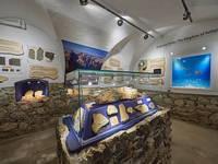 Fossilienausstellung im Pfarrhaus Solcava