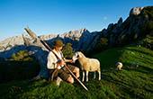 Hirte mit Schaf auf Strelovec