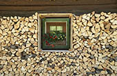 Solcava - Holz