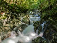 Trenta - Wasserhain Sunik, Lepena