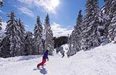 Snowboarden Golte