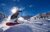 Snowboarden, Vogel