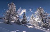 Winterlandschaft Krvavec